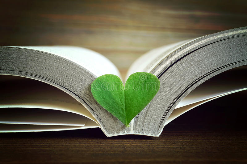 Opened book and heart royalty free stock photo