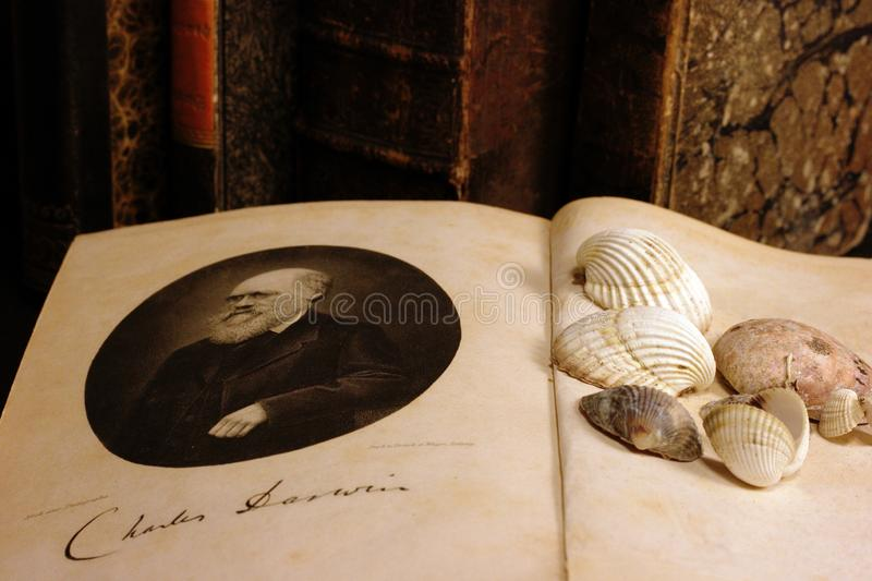 Opened book `The origin of species` by Charles Darwin. royalty free stock photography