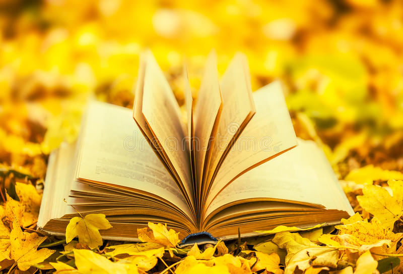 Opened book. Over nature background stock photo