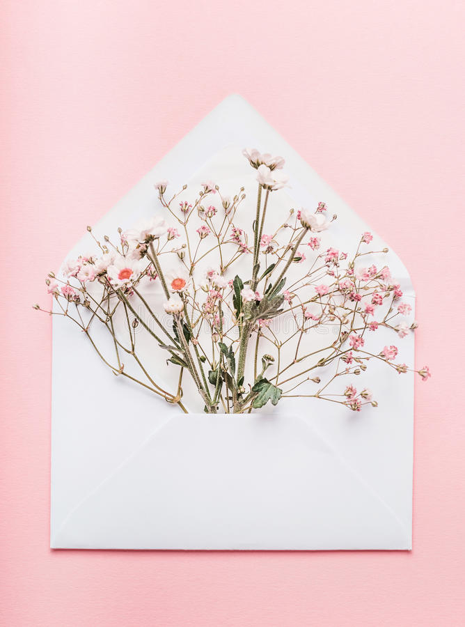 Opened envelope with flowers arrangements on pink background, top view. Festive greeting. Concept royalty free stock photos