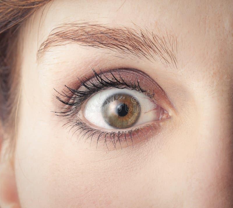 Download Opened eye stock image. Image of caucasian, closup, skin - 35808045
