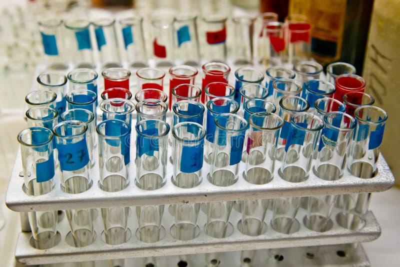 Opened markierte Reagenzgläser für Proben für Analyse im Labor lizenzfreie stockfotografie