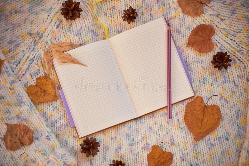 Opened notebook with blank pages surrounded by autumn leaves and cones on a woolen background. Autumn flat lay stock image