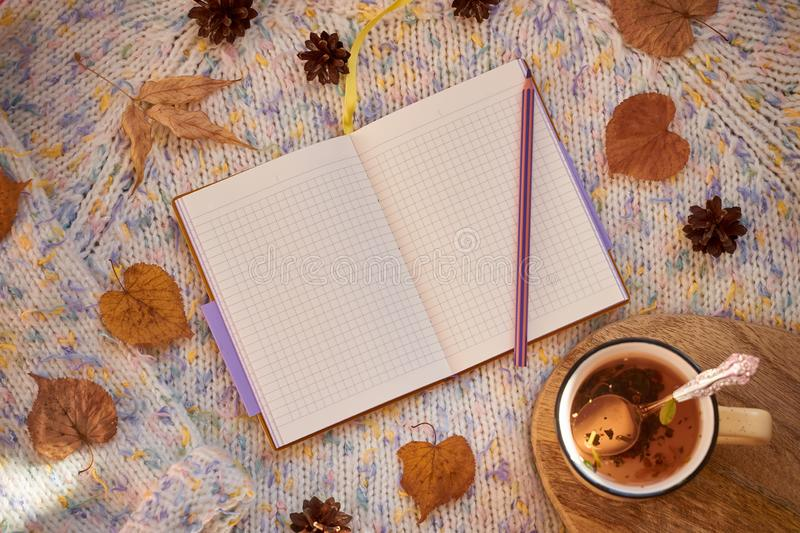 Opened notebook with blank pages surrounded by autumn leaves and cones on a woolen background. Flat lay, mock up royalty free stock images
