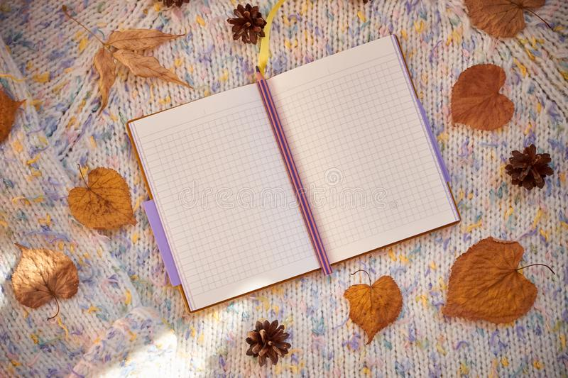 Opened notebook with blank pages surrounded by autumn leaves and cones on a woolen background. Autumn flat lay royalty free stock image