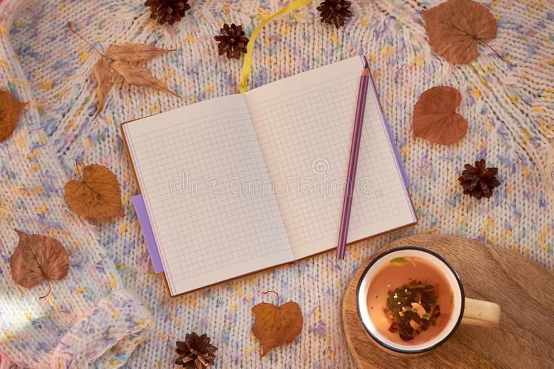 Opened notebook with blank pages surrounded by autumn leaves and cones on a woolen background. Flat lay, mock up stock image