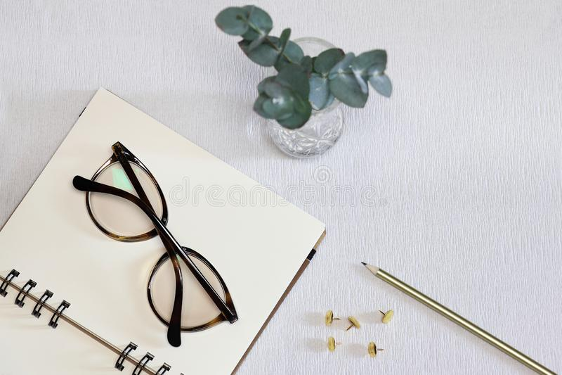 Opened notebook with spectacles, pen, golden pins and green plant stock images