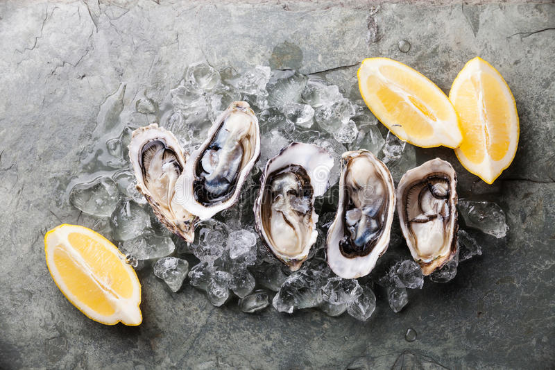 Opened Oysters with ice and lemon royalty free stock photography