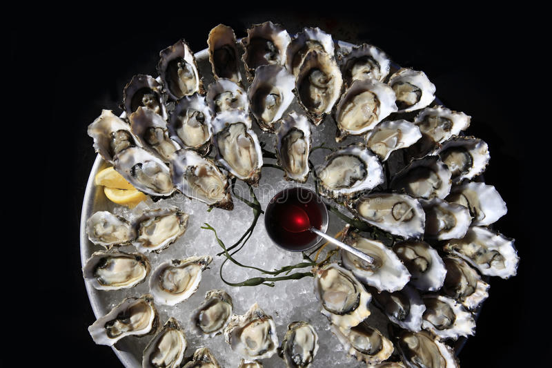 Opened oysters on ice stock photography