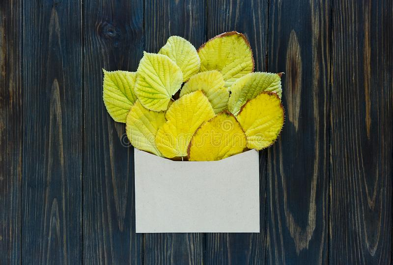 Opened paper envelope on old brown wooden background with yellow leaves. Vintage style of communication. royalty free stock photo