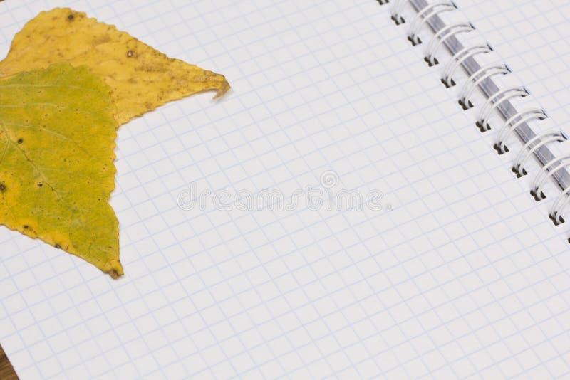 Opened school notebook stock images