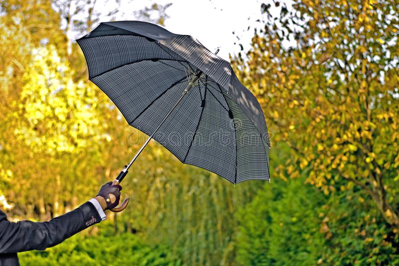 Gloves and umbrella. Opened umbrella in sunny autumn day in men`s hand in car gloves royalty free stock photo