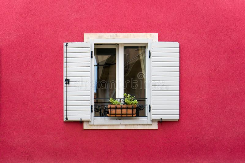 Opened window with white wooden shutter and flower pot on the red wall royalty free stock photos