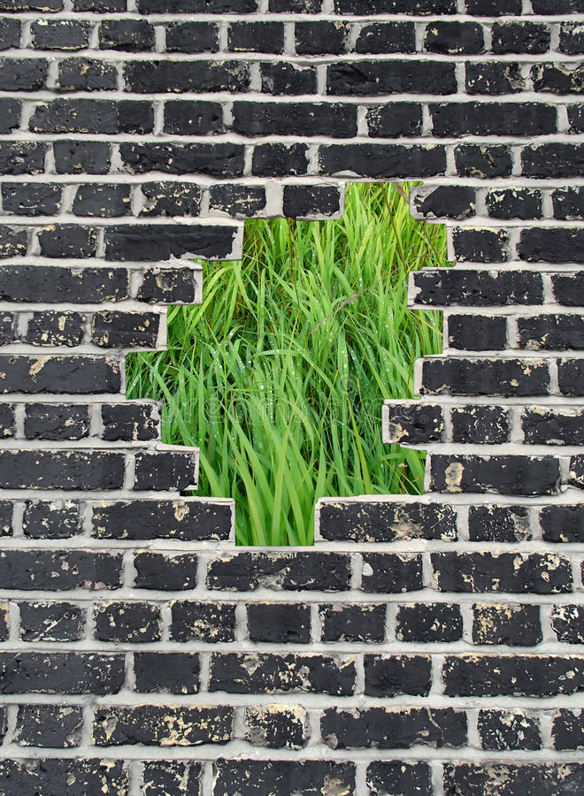 Opening in a brick wall, green grass stock photo