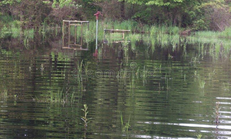 In openlucht, Bomen, Overstroming, Water, Handpomp royalty-vrije stock foto's