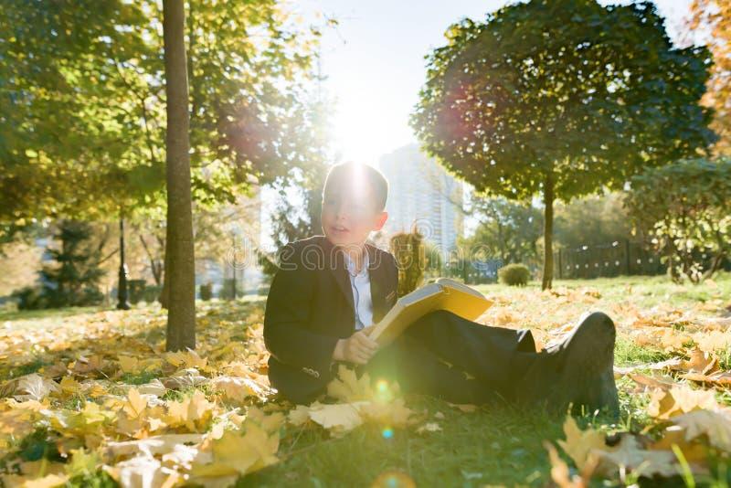 Openlucht de herfstportret van het boek van de schooljongenlezing, achtergrond van gele bomen in het park, jongen in jasje, goude stock foto's