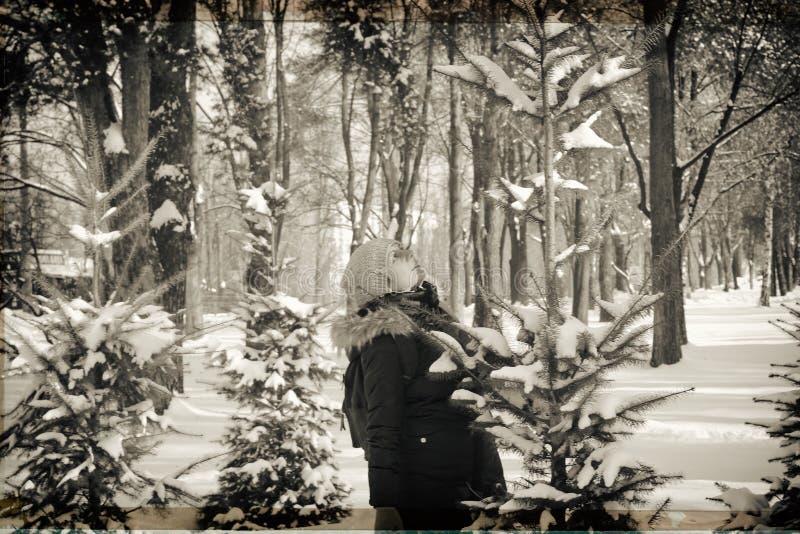 Openlucht dicht omhooggaand portret van jong mooi gelukkig glimlachend meisje in het bos Model stellen in een sneeuwpark Het conc royalty-vrije stock foto