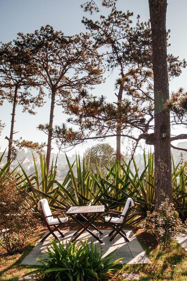 Openlucht houten die stoelen en lijst onder pijnboomboom met agavestruiken wordt omringd royalty-vrije stock foto