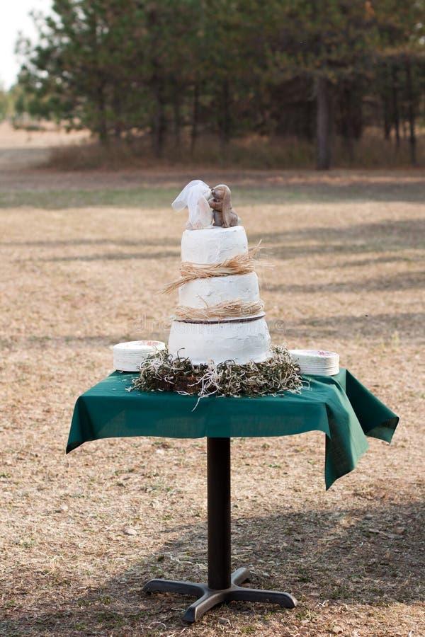 Openlucht huwelijkscake stock fotografie