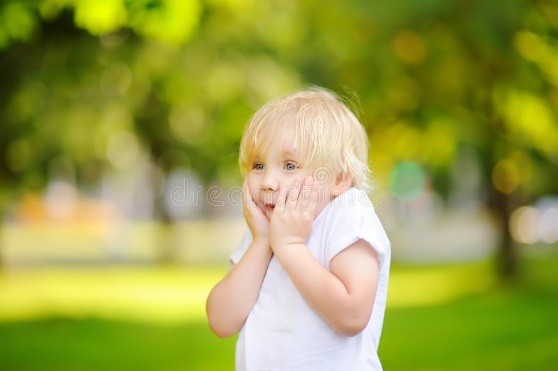 In openlucht portret van leuke emotioneel weinig jongen stock foto