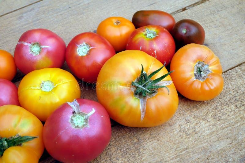 In openlucht stilleven met rijpe rode en oranje tomaten op bruine houten lijstoppervlakte als achtergrond royalty-vrije stock foto's