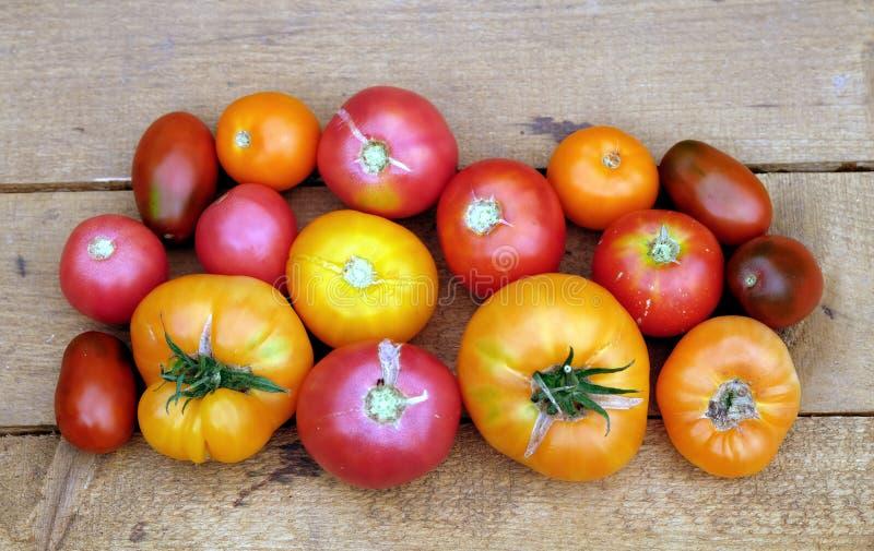 In openlucht stilleven met rijpe rode en oranje tomaten op bruine houten lijstoppervlakte als hoogste mening als achtergrond stock foto's