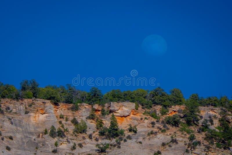 Openluchtdiemening als berg met vegetatiuon wordt behandeld, in Zion Canyon op een mooie zonnige dag met blauwe hemel wordt geves royalty-vrije stock afbeelding