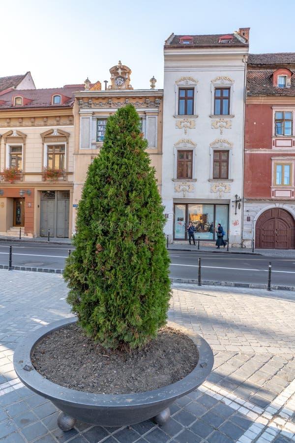 Openluchtinstallaties in oude Brasov, Roemenië stock foto