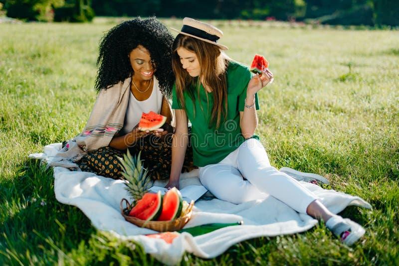 Openluchtpicknickportret Twee vrienden van het multi-rasmeisje hebben pret Het verleidelijke Afrikaanse meisje doorbladert via mo stock foto's