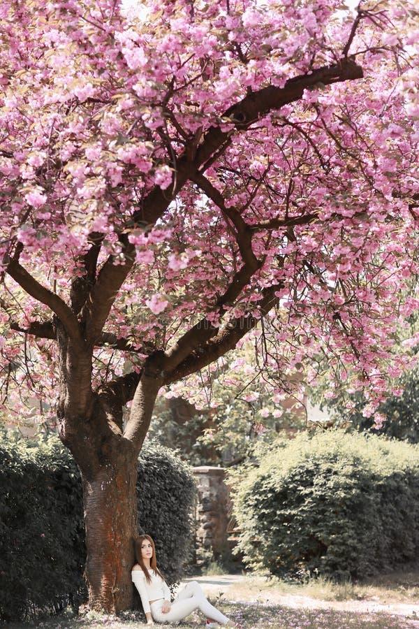 Openluchtportret van het jonge mooie gelukkige het glimlachen dame stellen dichtbij bloeiende boom Model dragende modieuze toebeh stock afbeelding
