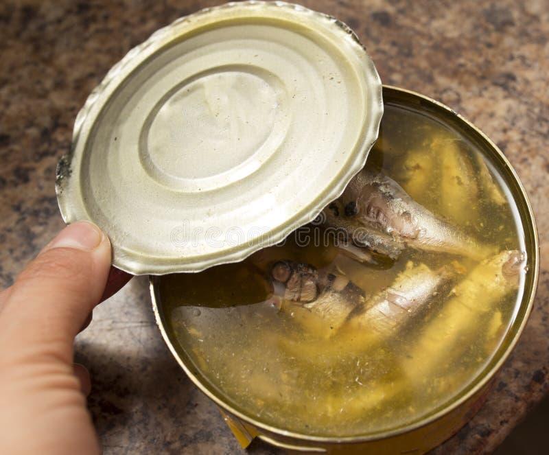 Opens ha inscatolato il pesce con un apri di latta fotografia stock libera da diritti