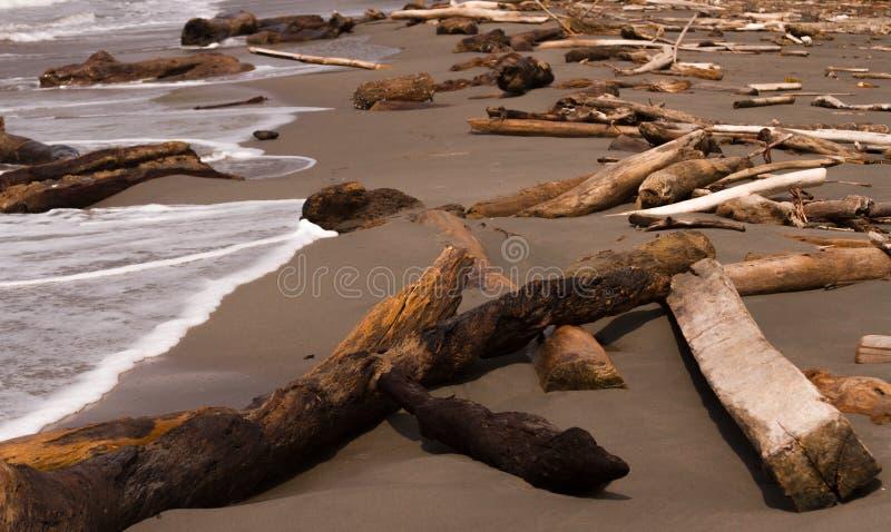 Opent het strand het programma royalty-vrije stock foto's