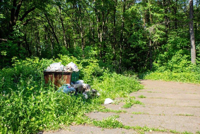 Operação de descarga, descarga de lixo no parque da cidade foto de stock royalty free