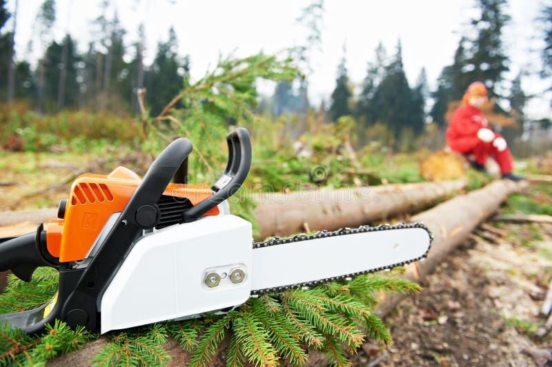 Operaio del boscaiolo con la sega a catena nella foresta immagini stock libere da diritti