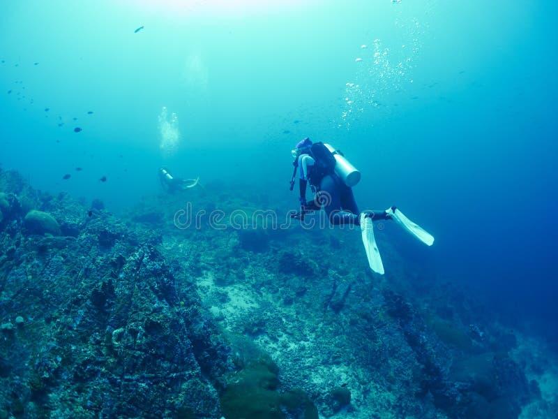 Operatore subacqueo con corallo immagini stock libere da diritti