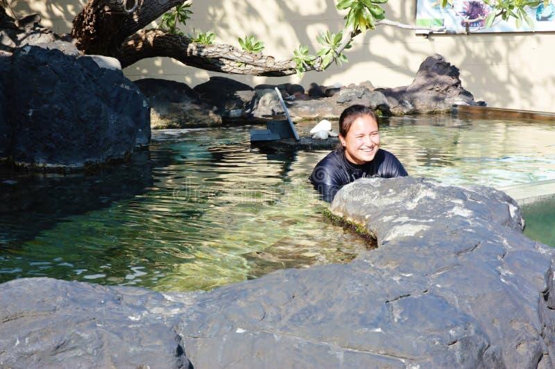 Operatore subacqueo coraggioso dell'acquario e dello squalo dell'oceano di Maui fotografie stock libere da diritti