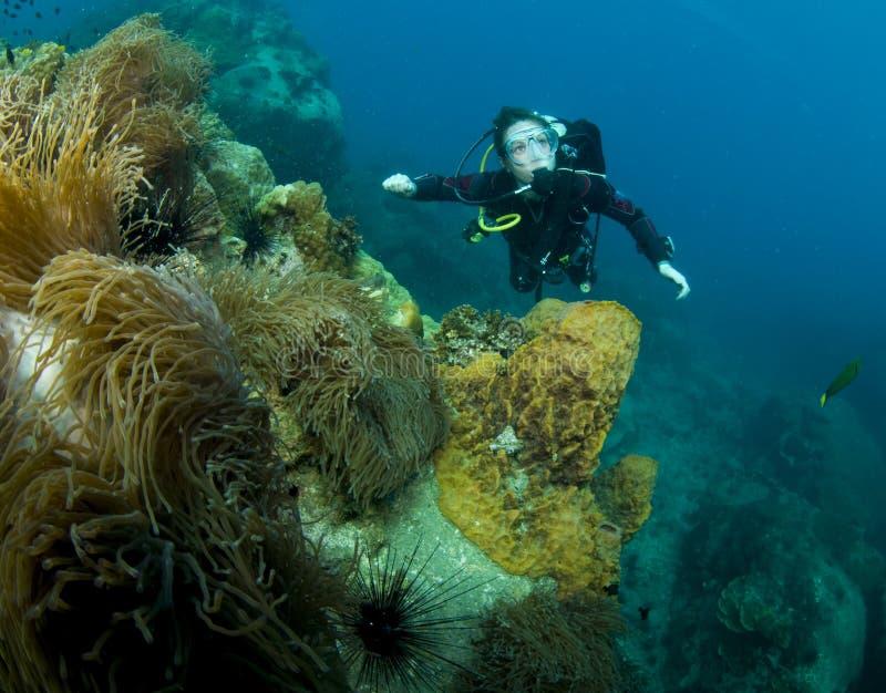 Operatore subacqueo di scuba della donna fotografie stock