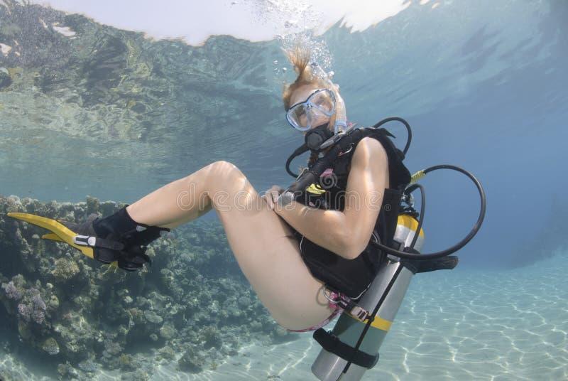 Operatore subacqueo di scuba della femmina adulta in bikini immagini stock libere da diritti