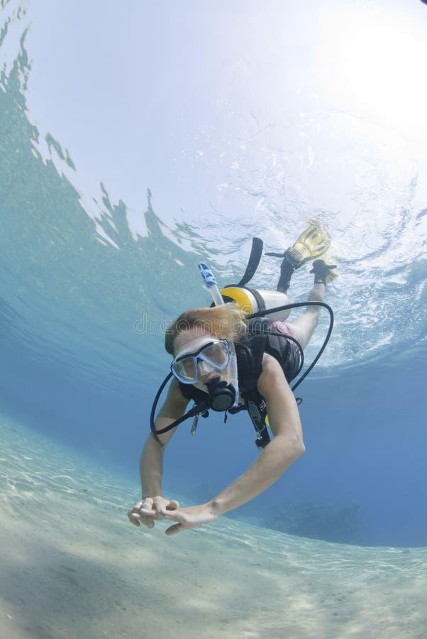 Operatore subacqueo di scuba della femmina adulta in bikini fotografia stock