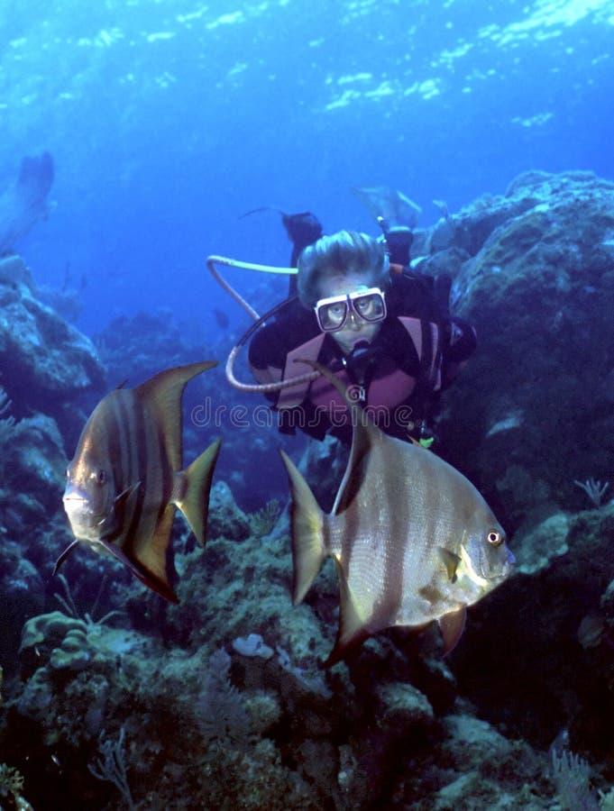 Operatore subacqueo e pesci angelo della donna