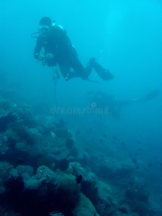 Operatori subacquei della scogliera fotografie stock libere da diritti
