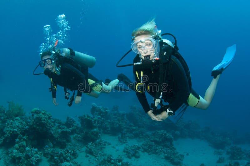 Operatori subacquei di scuba immagine stock