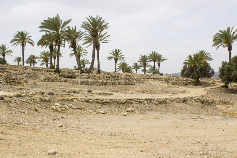Opgegraven ruïnes in de oude stad van Meggido Israël royalty-vrije stock foto