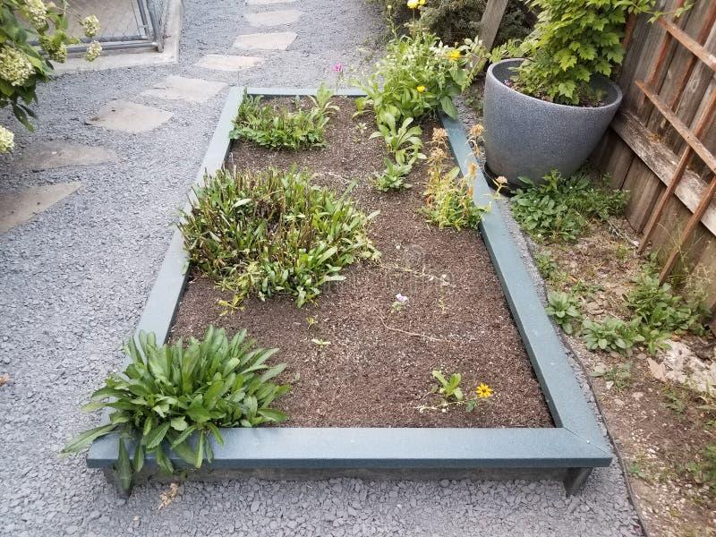 Opgeheven bedtuin met groene installaties en grintweg met springplanken royalty-vrije stock foto's