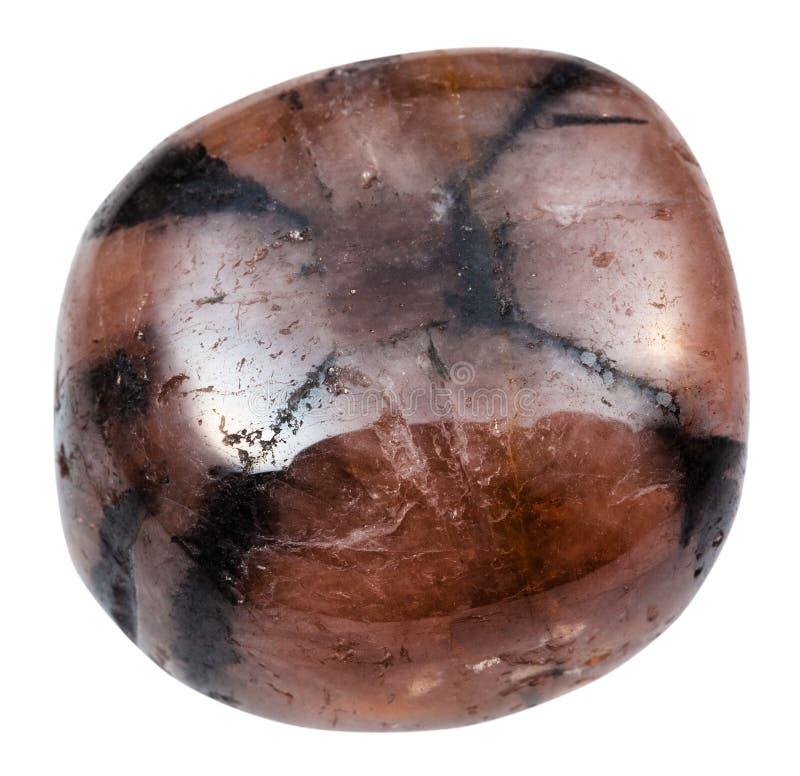 Opgepoetste Chiastolite-geïsoleerde Andalusietsteen stock afbeeldingen
