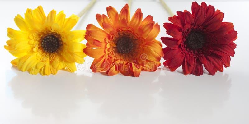 Opgestelde kunstbloemen stock fotografie