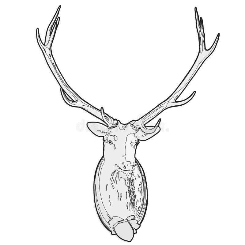 Opgezet hertenhoofd Gevuld mannetje, monumentale geweitakken Geschetste de jachttrofee stock illustratie