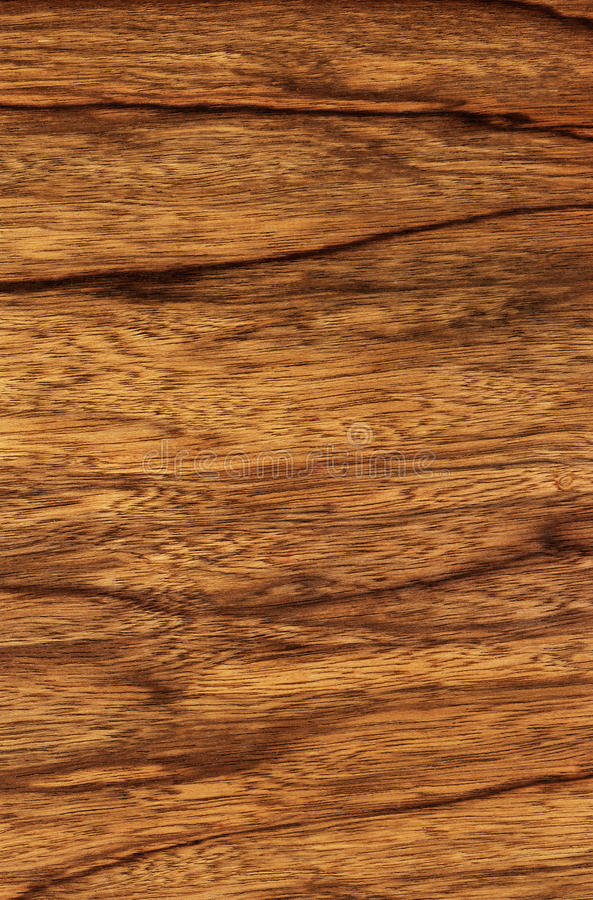 Download Ophra (wood texture) stock photo. Image of abstract, plank - 23701460