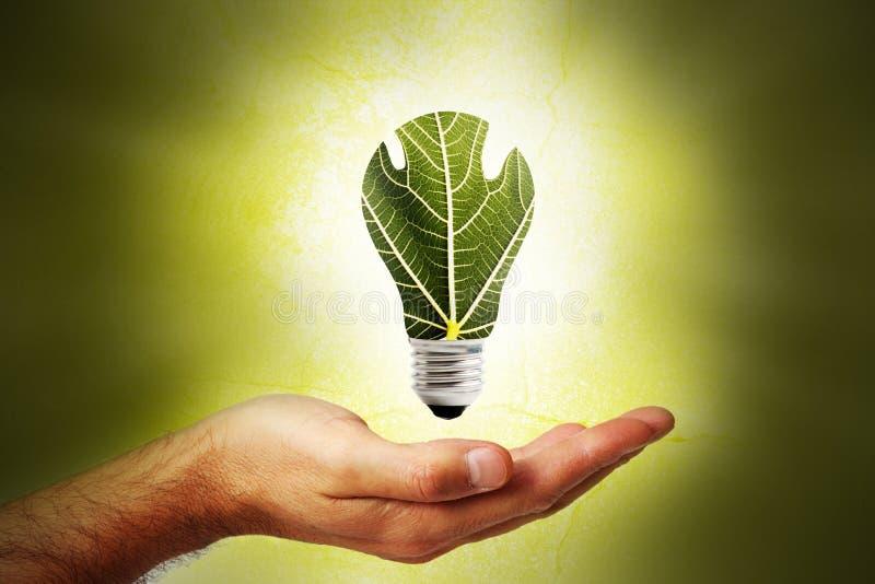 Opieka i ochrona środowisko -2 zdjęcia royalty free