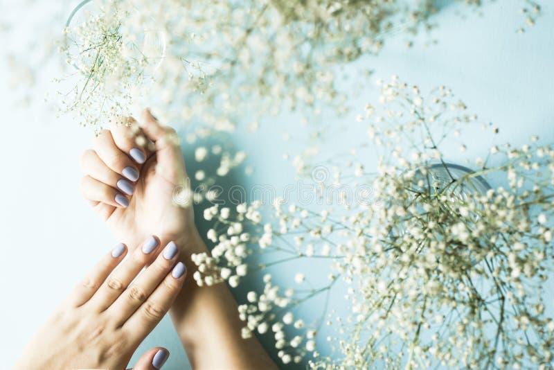 Opieka kobiety ` s ręki zdjęcie royalty free